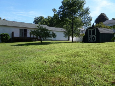 Spacious Rear yard with storage shed